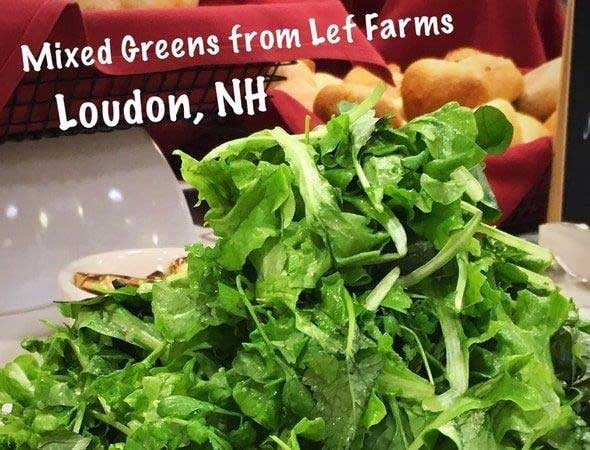 Photo of locally sourced greens for senior living food service from Lef Farms.